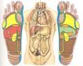 Reflexoterapie - punctele reflexe de pe talpa
